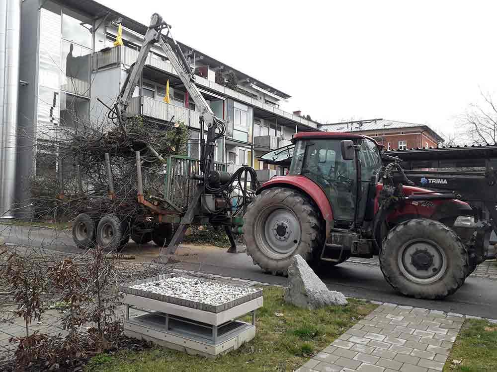 Baumpflege_Entsorgung_Ravensburg