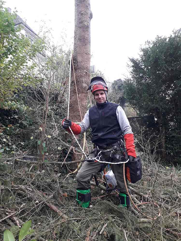 Baumpfleger_guenstig_Ravensburg
